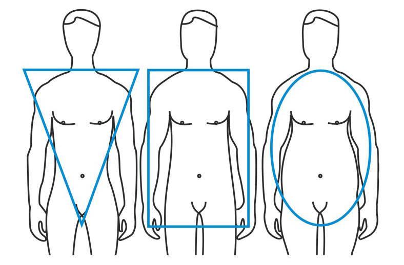 3 типа мужской фигуры